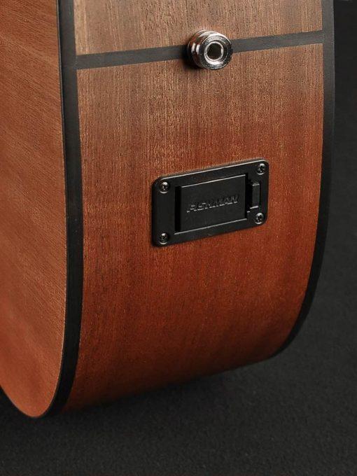 Richwood Master Series D-20-E, dreadnought gitaar-6060