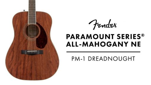 Fender PM-1 Dreadnought NE, All-Mahogany, incl case-6094